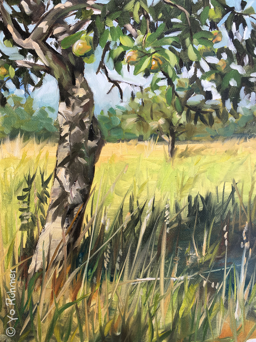 Apfelbaum gemalt