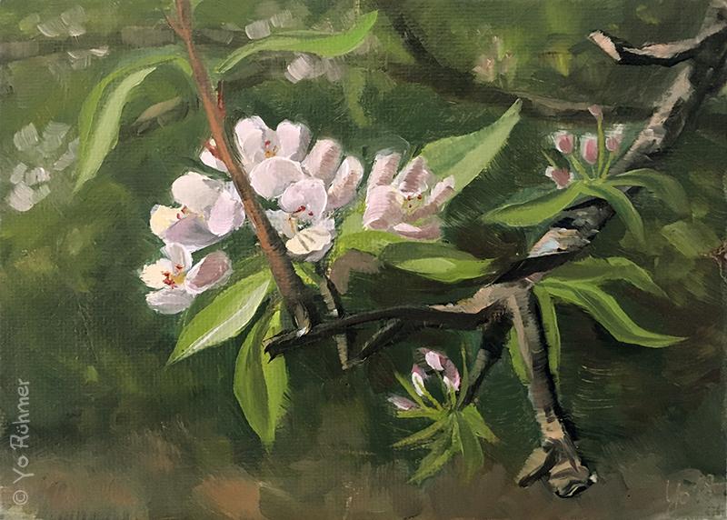 apfelblüte ölbild