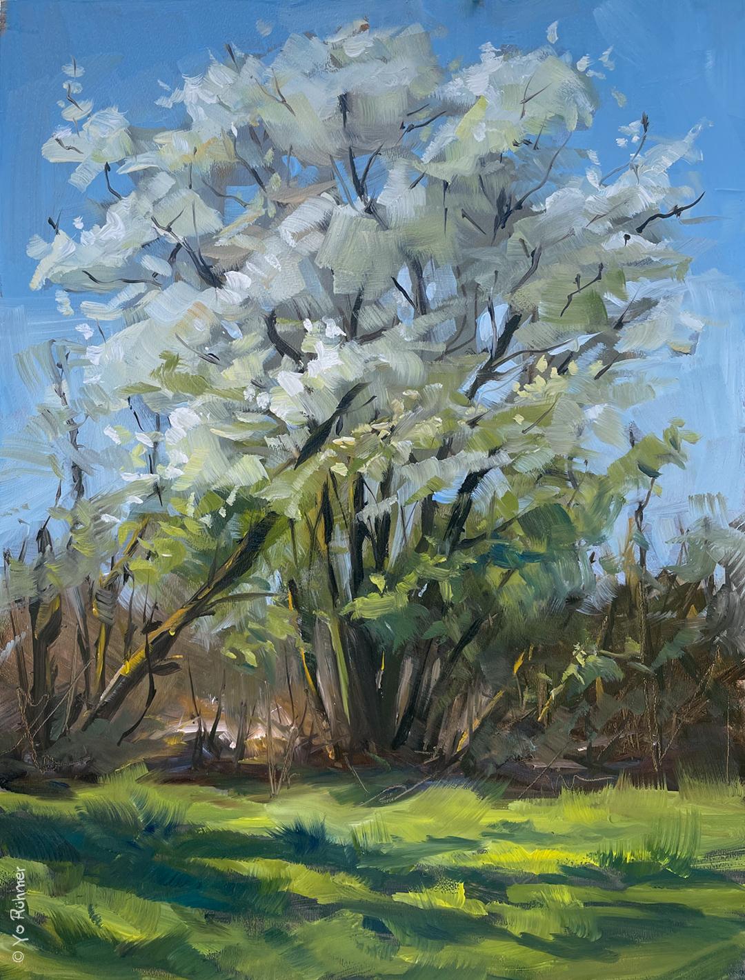 fruehlingsblueten Ölbild