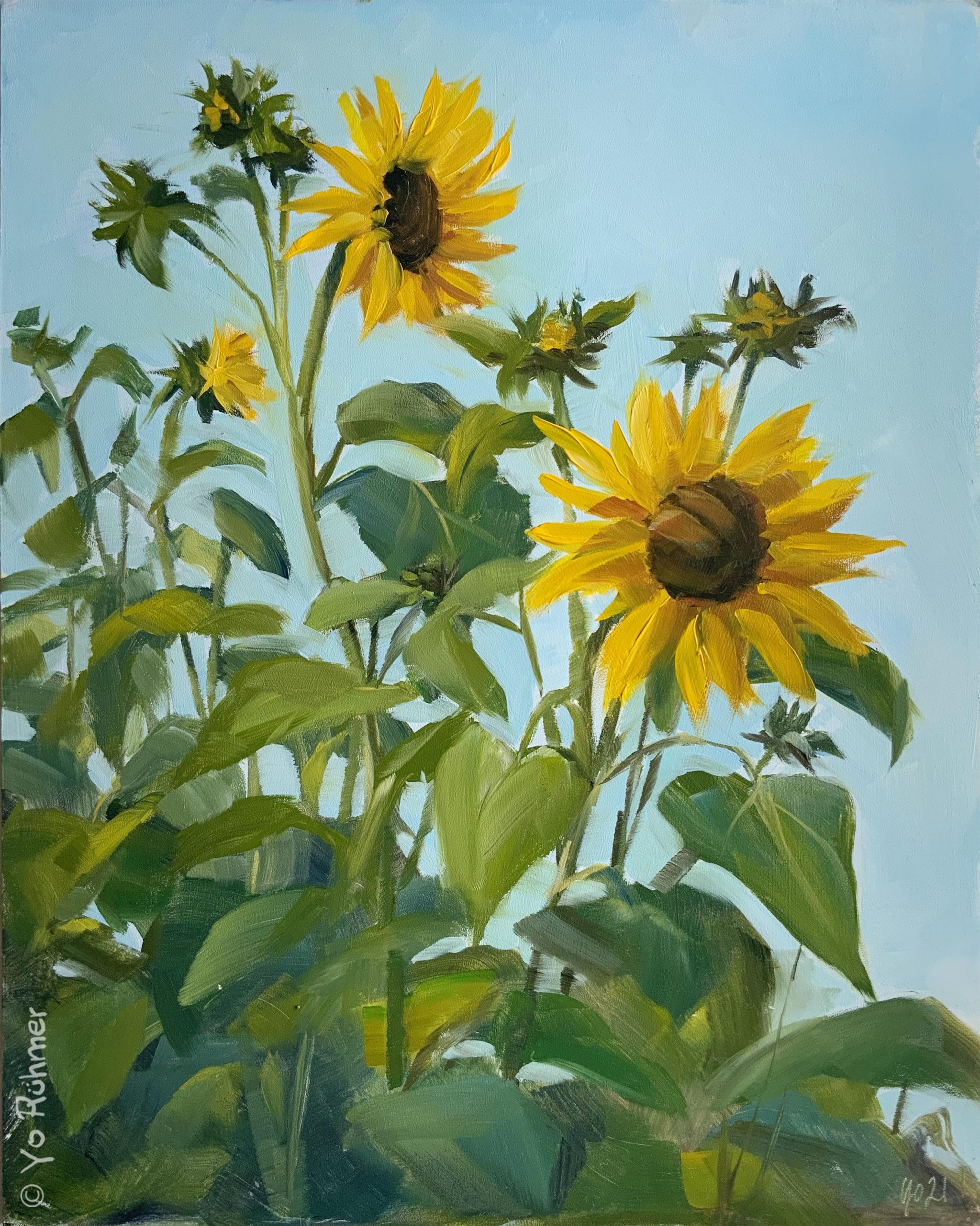 sonnenblumen-oelbild-pleinairmalerei-912