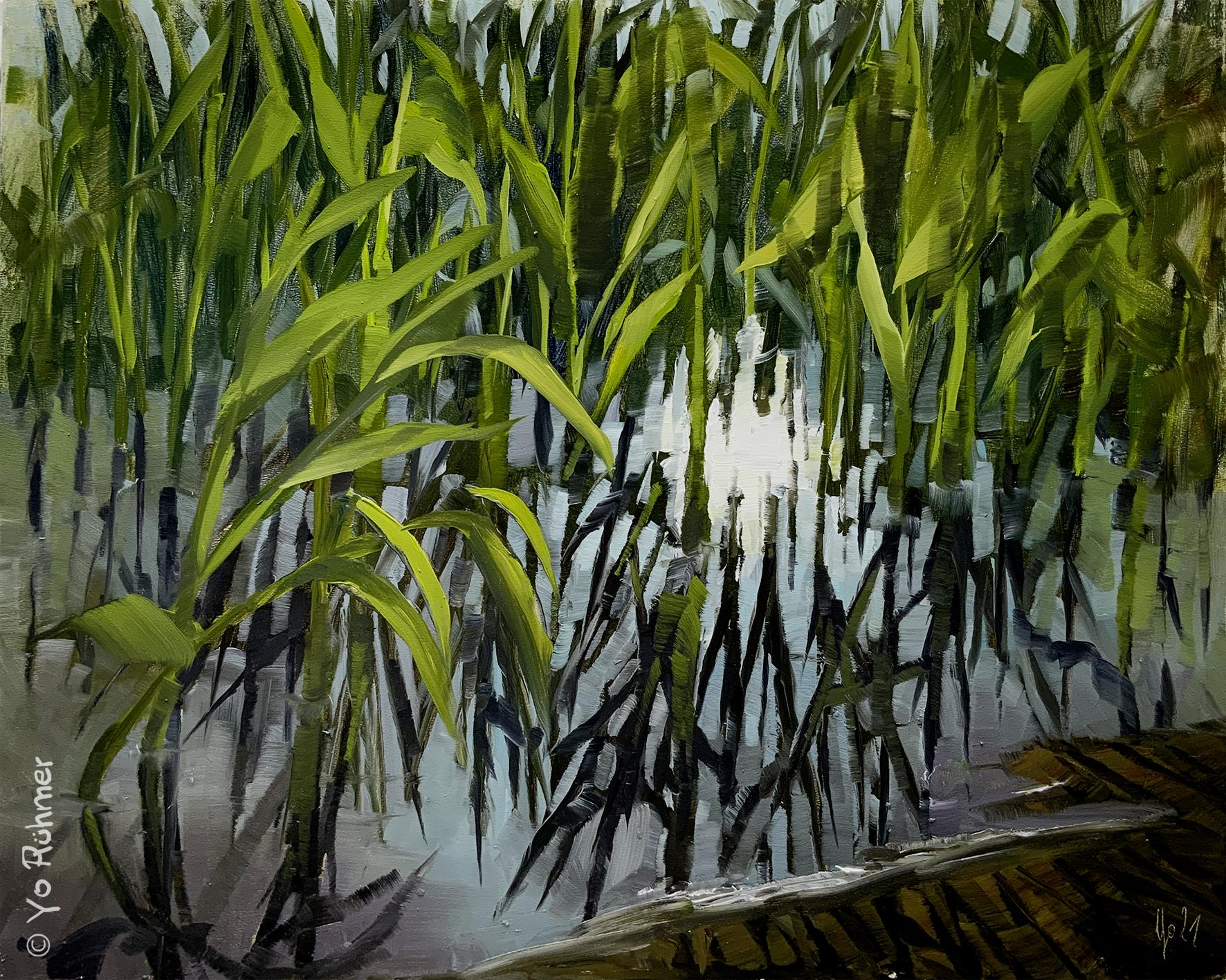 schilf-oelbild-pleinairmalerei-929
